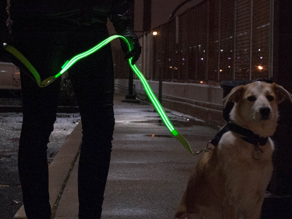 The LED Lite Up Leash