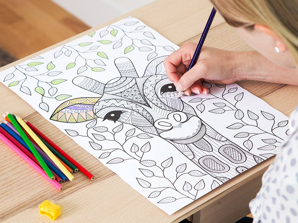 Coloring Poster Set
