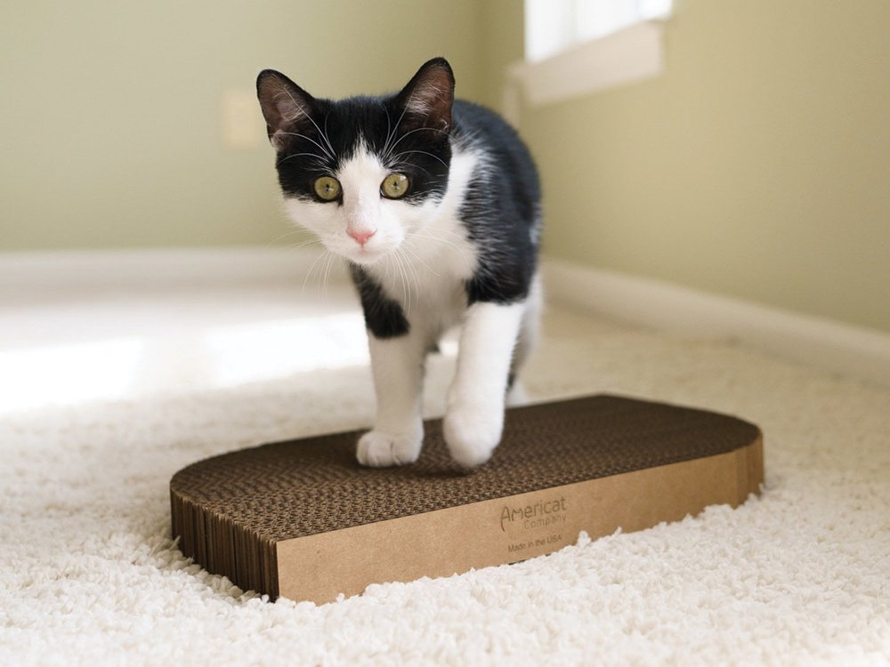Durable Cardboard Cat Scratching Pad